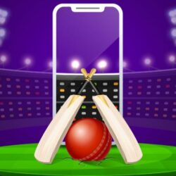 App For Cricket Betting – The Latest Flavor Of The Season