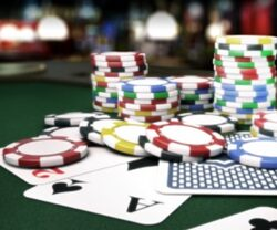 Here is Guide to Play Domino99: Play and Enjoy Gambling